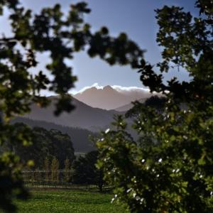 Mount Arthur, South Island, New Zealand