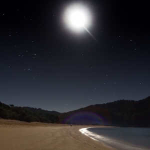 A photograph (night time landscape) for sale which shows a couple walking on a moonlit beach in Totaranui, Abel Tasman National Park, South Island, New Zealand - available to buy